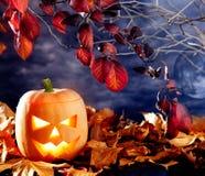 Halloween lantern pumpkin  in dark sky clouds Stock Image