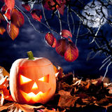 Halloween lantern pumpkin  in dark sky clouds Stock Photography