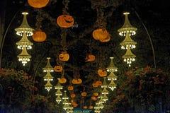 Halloween lanterns Royalty Free Stock Images