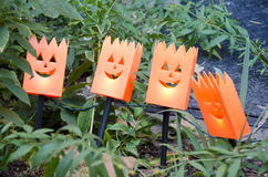 Halloween-lichten Stock Foto