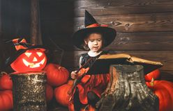 Halloween.  little witch   conjures with  book of spells,  magic Stock Photo