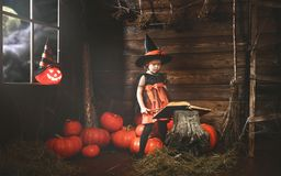 Halloween.  little witch   conjures with  book of spells,  magi Royalty Free Stock Images