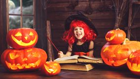 Halloween.  little  witch   conjures with  book of spells,  magi Royalty Free Stock Photo