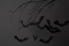 Halloween and a lot of bats. Halloween with silhouettes of black bats on a tree branch on a dark background royalty free stock image