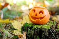Halloween läskig pumpa i höstskog Royaltyfri Fotografi