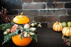Halloween lub dziękczynienia tło z kopii przestrzenią Jesień skład w bani z pajęczyną, kukurudza, goździka kwiat obrazy royalty free