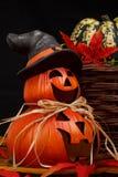 halloween lycklig pumpa Royaltyfria Bilder