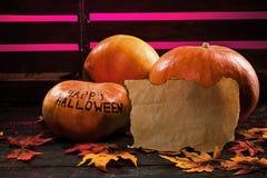 halloween lyckliga pumpor Arkivbild