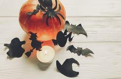 halloween Lyckligt halloween begrepp pumpa med häxaspökeslagträet Arkivbild