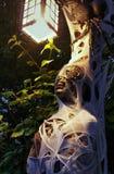 Halloween-Mama und riesige Spinne Stockbilder