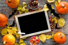 Halloween-Modell Tafel nahe Papierschlägern und Kürbisen auf Draufsicht des hölzernen Hintergrundes Stockbild