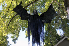 Halloween monster bat in tree Royalty Free Stock Image