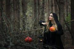 Halloween mooi heksenmeisje in een zwarte kleding in het bos stock foto's