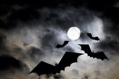 Halloween Moon Stock Photography