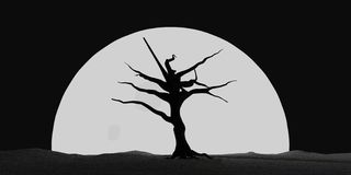 Halloween Moonlit Tree stock photography