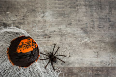 Halloween muffin and a spider on rustic wooden background Royalty Free Stock Images