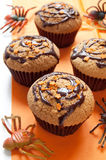 Halloween muffins Stock Images