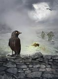 Halloween mystical background with raven on stone wall Royalty Free Stock Photo