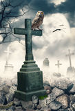 Halloween mystical spooky background with owl and cross Royalty Free Stock Image