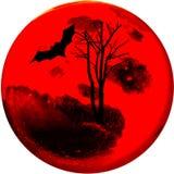 In Halloween-nacht stock afbeeldingen