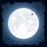Halloween-nacht met spinnen Royalty-vrije Stock Foto's
