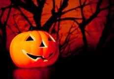 Halloween-nachtachtergrond met enge donkere bos en pompoen Royalty-vrije Stock Afbeeldingen