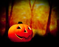 Halloween-nachtachtergrond met enge donkere bos en pompoen Stock Afbeelding