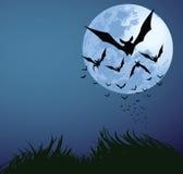 halloween natt Arkivbilder