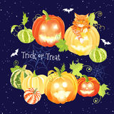 Halloween navy design set with pumpkins, cat, bats and spider we Stock Images