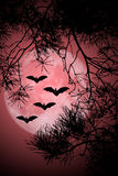 Halloween Night. This image shows flying bats in a halloween night with full moon stock illustration