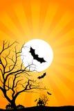 Halloween night Stock Image