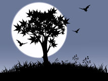 Halloween night. Bat and tree on black and white background ,horror Royalty Free Stock Images