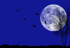 Halloween night background. Perfect background for halloween concept Royalty Free Stock Images