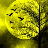 Halloween night background. Halloween background. Bats flying in the night with a full moon in the background Royalty Free Stock Image
