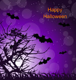 Halloween Night Background with Bats Stock Image
