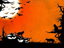 Halloween night background with dead trees, bats, cats and pumpkins Royalty Free Stock Photography