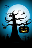 Halloween night background flying witch over cemetery  Stock Photography