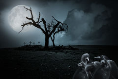 Halloween night background. With full moon, spooky naked tree, tombs and crows Royalty Free Stock Photo