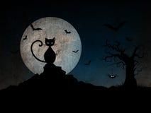 Halloween night background Royalty Free Stock Image