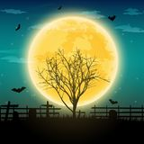 Halloween night background with naked trees, bat and full moon o. N dark background.Vector illustration Royalty Free Stock Images
