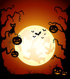 Halloween night background with pumpkin and black cat Royalty Free Stock Photography