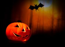 Halloween night background with scary bat and pumpkin Stock Images