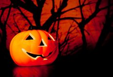 Halloween night background with scary dark forest and pumpkin Royalty Free Stock Images