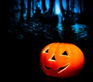 Halloween night background with scary dark forest and pumpkin Stock Photo