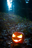 Halloween night is coming! Royalty Free Stock Photos