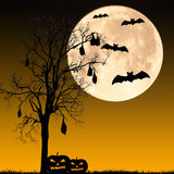 Halloween night concept Stock Photography