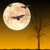 Halloween night concept. Halloween night, dead tree with bat flying on the moon background,useful for some Halloween concept Royalty Free Stock Image