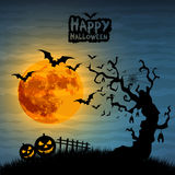 Halloween night illustration Stock Photo