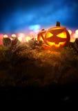 Halloween Night. A Jack O Lantern Pumpkin glowing orange on Halloween evening between autumn leaves Stock Photography