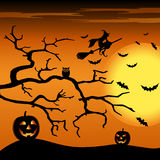 Halloween night orange background with witch and pumpkins Royalty Free Stock Image